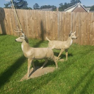 Buck and Doe Deer Statues