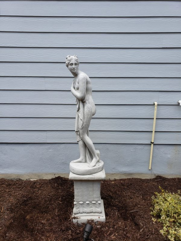 Venus on Pedestal